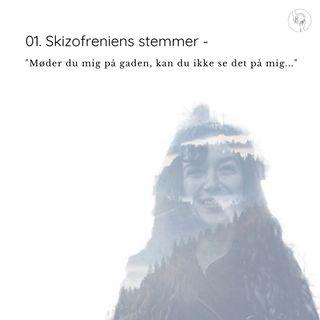 """Skizofreniens stemmer - """"Møder du mig på gaden, kan du ikke se det på mig..."""""""