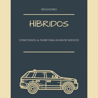 02 Híbridos