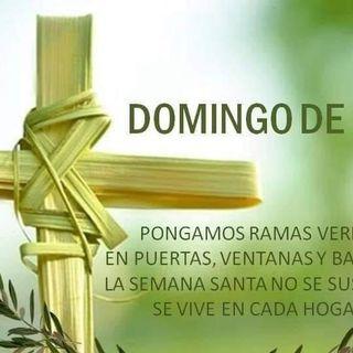 Domingo de Ramos en la Pasión del Señor