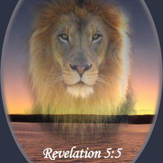 Rev Joe 2-10-19