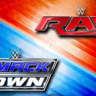 WWE Rivalries: Raw vs Smackdown 2005