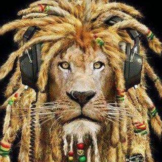 Haile Selassie Pineda