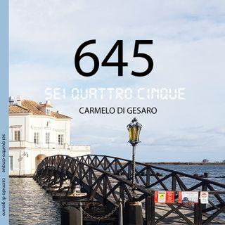 645: Una storia d'amore ritratto...