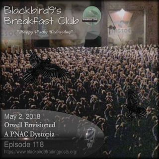Orwell Envisioned A PNAC Dystopia - Blackbird9 Podcast
