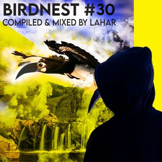 BIRDNEST #30 | Melodic Organic Progressive House Mix | Compiled & Mixed by The Lahar