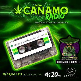 Canamo Radio Todo sobre Expoweed