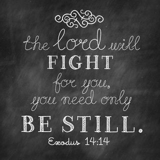 The LORD Will Fight All Your Battles If You Trust Him