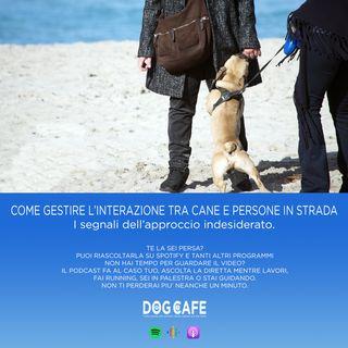 #052 - Come gestire l'interazione tra cane e persone per strada. I segnali dell'approccio indesiderato.
