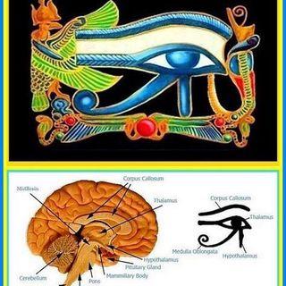 1^ attivazione del terzo occhio 👁- meditazione di attivazione dell'occhio di horus, occhio del sole ☀️