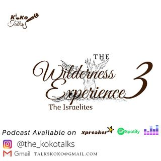 The WILDERNESS EXPERIENCE 3B