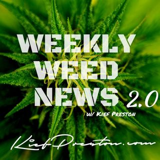 Weekly Weed News 2.0 W/ Kief Preston - Episode 95 - December 22nd 2019