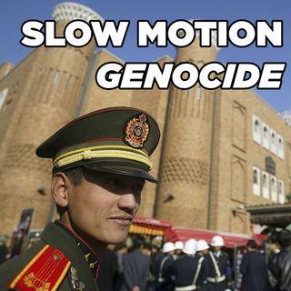 #78 China's Slow Motion Uyghur Genocide | Arslan Hidayat