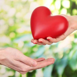 La magia de la generosidad - construye tu felicidad