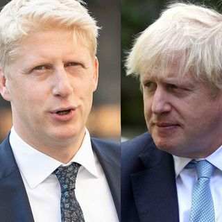 Jo Johnson 'torn' between national interest and family loyalty
