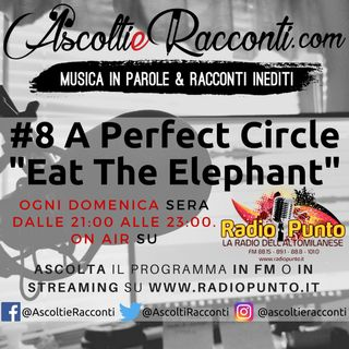 "Radio Punto | #8 A Perfect Circle - ""Eat The Elephant"" 22-04-2018"