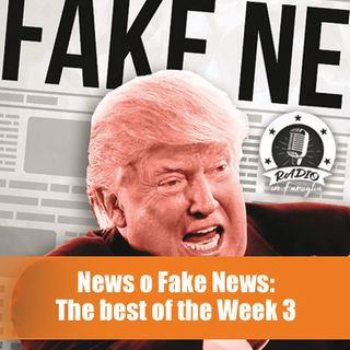 News o fake News? The Best of the Week 3
