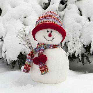 Freezer, l'omino di neve