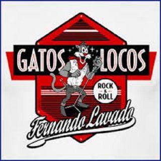 1X6 GATOS LOCOS