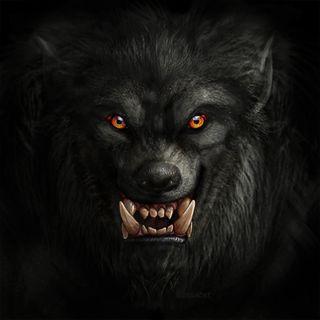 16.Il Cane Nero della Foresta Intricata - Fiaba Irlandese