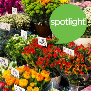 The Big Business of Flowers