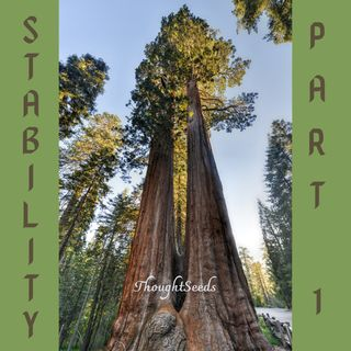 Episode 8: Stability, Pt 1