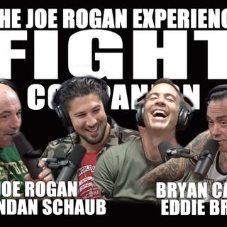 Fight Companion - September 7, 2019