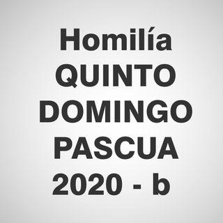 Homilía 5to Domingo Pascua 2020 - B