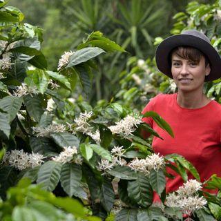 #6 - Życie na Plantacji Kawy - rozmowa z Jolą Czermińską