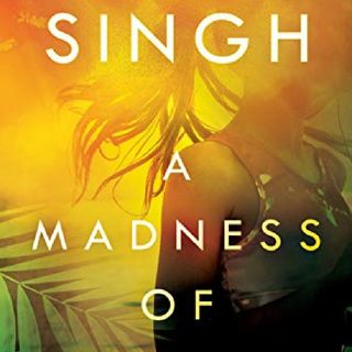 A Madness Of Sunshine ~ Reseña