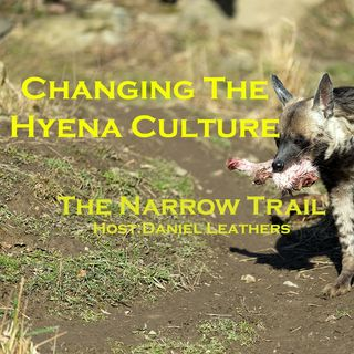 Changing The Hyena Culture