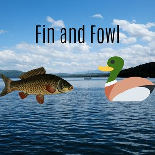 Fin and Fowl Podcast Fishing In Minnesota