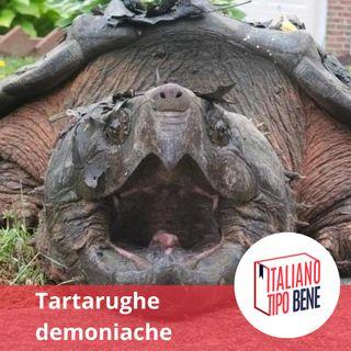 #9 - Tartarughe demoniache