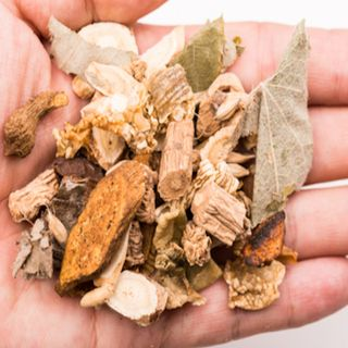 Chinese Herbs For Pets - Dr Barbara Fougere