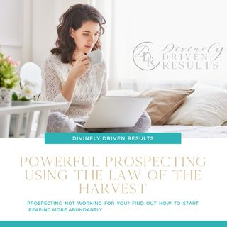 Powerful Prospecting Using the Law of the Harvest
