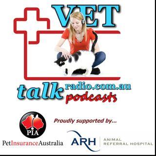 Dental Braces For Dogs? - Dr Christine Hawke, ARH Dental Services