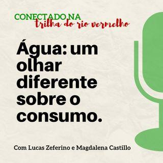 Água: um olhar diferente sobre o consumo.