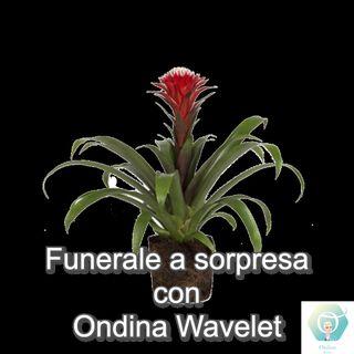 """""""Funerale a sorpresa"""" con Ondina Wavelet   🎧🇮🇹"""