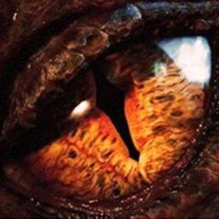 FILM GARANTITI: Lo Hobbit - La desolazione di Smaug (2012-2014) ***