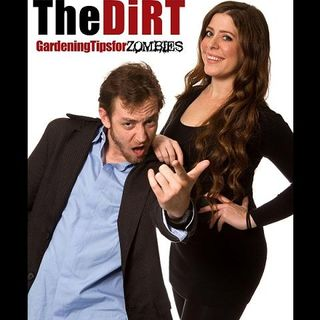 The DiRT 11/13/13