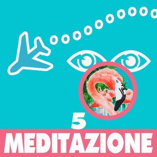 Meditazione 5 fenicotteri nella savana