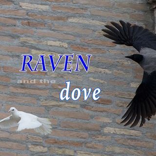 The Raven and the Dove, Genesis 8:5-9