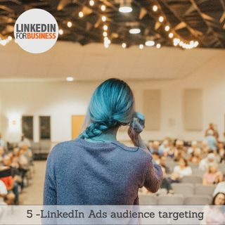 95- LinkedIn Audience targeting
