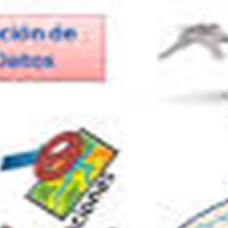 Copias de Seguridad, Consultas SQL y Trigger
