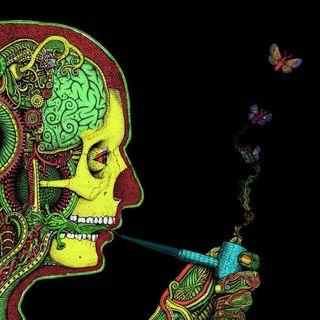 Medical Marijuana Radio - 02-28-17