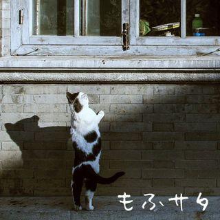 もふサタ ラストラン20200430 #ラジクド