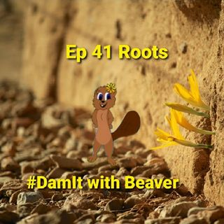 Ep 41 Roots