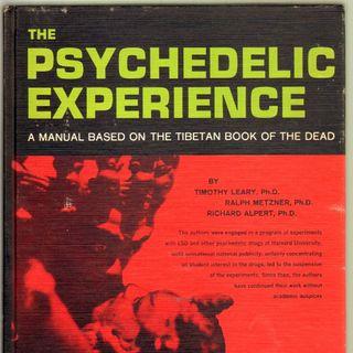 Una ragazza di nome Sandoz: breve storia dell'LSD