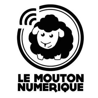 #5. Irenée Regnauld - Mais ou va l'AI - Mouton Numerique 2/2