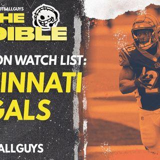 2021 Fantasy Football - Cincinnati Bengals Preseason Watch List