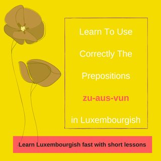 Lesson 15 Learn to use correctly the prepositions aus-vun-zu